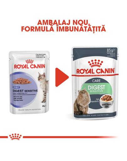 Royal Canin Digestive Care Adult hrana umeda pisica pentru confort digestiv, 12 x 85 g