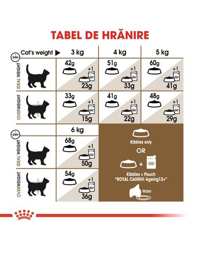 Royal Canin Ageing 12 + hrana uscata pisica senior, 400 g