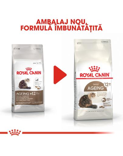 Royal Canin Ageing 12 + hrana uscata pisica senior, 4 kg