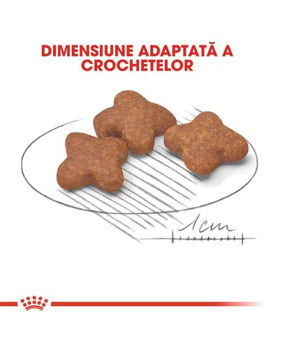 Royal Canin Mini Adult 8+ Hrană Uscată Câine 8+1 kg