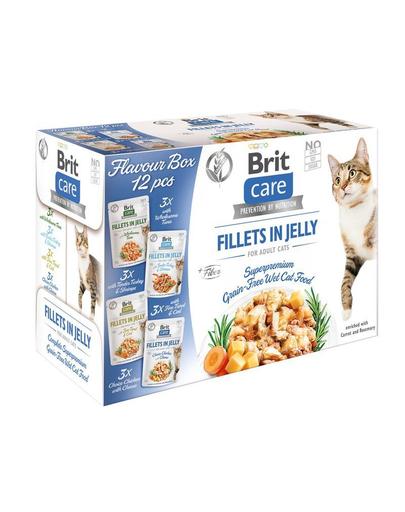 BRIT Care Cat Flavour Box in Jelly hrana umeda mix pentru pisici, 12 x 85g fera.ro
