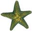 TRIXIE Set de 12 stele de mare
