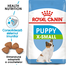 Royal Canin X-Small Puppy hrana uscata caine junior, 1.5 kg