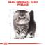 Royal Canin Persian Kitten hrana uscata pisica junior, 400 g