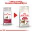 Royal Canin Fit32 Adult hrana uscata pisica cu activitate fizica moderata, 2 kg