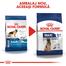 Royal Canin Maxi 5+ Adult hrana uscata caine intre 5 si 8 ani, 4 kg