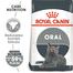 Royal Canin Oral Care Adult hrana uscata pisica pentru reducerea formarii tartrului, 8 kg