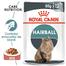 Royal Canin Hairball Care Adult hrana umeda pisica pentru reducerea formarii bezoarelor, 12 x 85 g