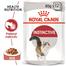 Royal Canin Instinctive In Gravy Adult hrana umeda in sos pentru pisica, 12 x 85 g
