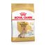 ROYAL CANIN Yorkshire Terrier Adult 8+ hrana uscata caine senior, 3 kg