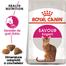 ROYAL CANIN Exigent Savour Adult hrana uscata pisica pentru apetit capricios 20 kg (2 x 10 kg)