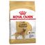 ROYAL CANIN Hrana uscata pentru cainii adulti din rasa Golden retriever adult 24 kg (2 x 12 kg)